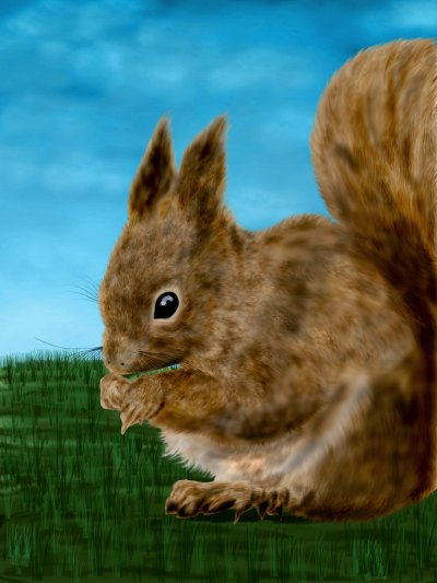 paint a squirrel using photoshop by nisha gandhi