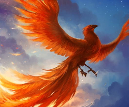 phoenix flaming bird