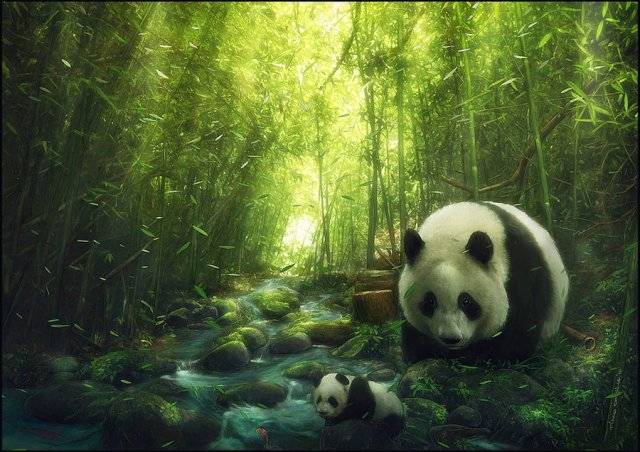 panda in a forest lake