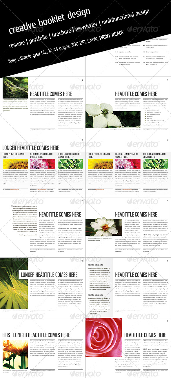 product catalogue brochure