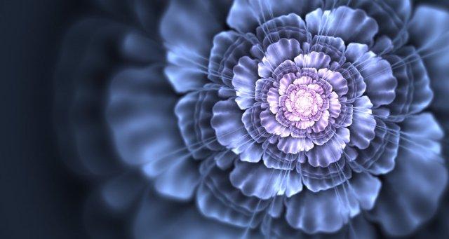 fractal art flower