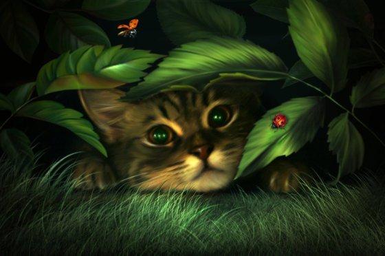 Photo manipulation of a cat by elena dudina
